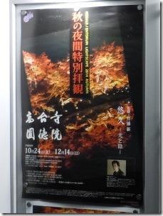 京都高台寺秋の夜間特別拝観