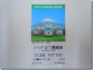 jungle bus ticket
