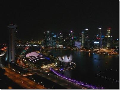 シンガポールフライヤーからの夜景