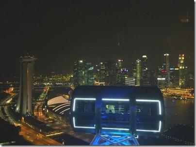シンガポールフライヤーのゴンドラと摩天楼の夜景
