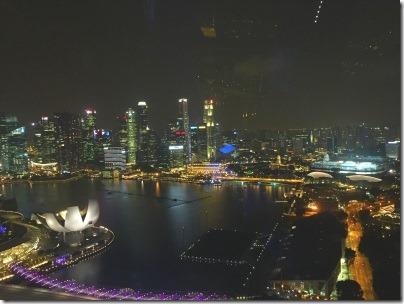 シンガポールフライヤーから見たマーライオンパーク方面の夜景